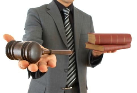 Представительство в суде опытного юриста Москва и Московская область московский арбитражный суд. Семейное право, финансовое право, налоговое право